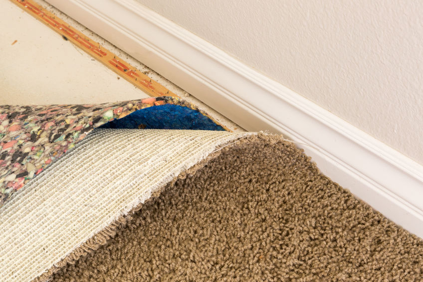 What to Do When a Pipe Bursts On Your Carpet?